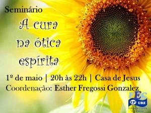 Seminario_ A cura na otica espirita_Maio 2014